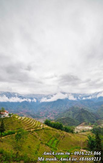 Hình ảnh tranh phong cảnh núi rừng tây bắc khổ dọc