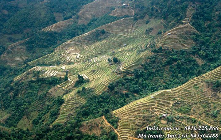 Hình ảnh ruộng bậc thang giữa núi đồi trùng điệp