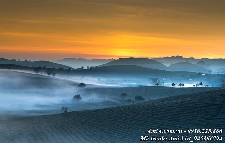 Hình ảnh phong cảnh đẹp rừng núi Tây Bắc giữa màn sương
