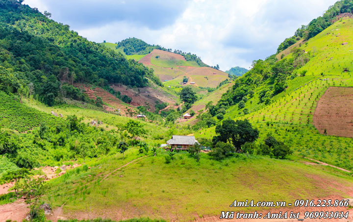 Phong cảnh đẹp thiên nhiên tươi xanh bao phủ núi đồi