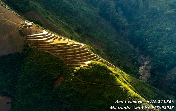 Tranh phong cảnh núi rừng tây bắc ruộng bậc thang