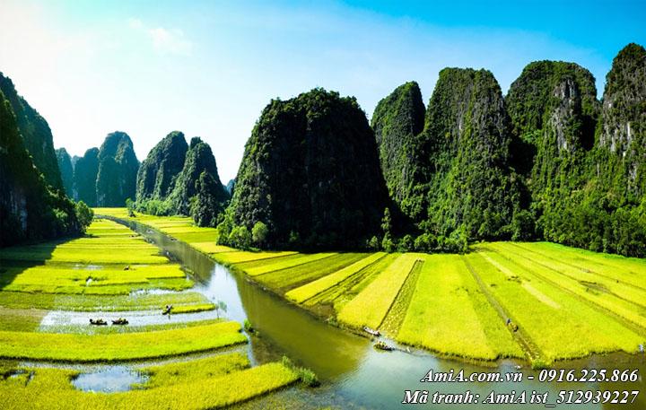 Hình ảnh thiên nhiên đẹp phong cảnh tràng an ninh bình