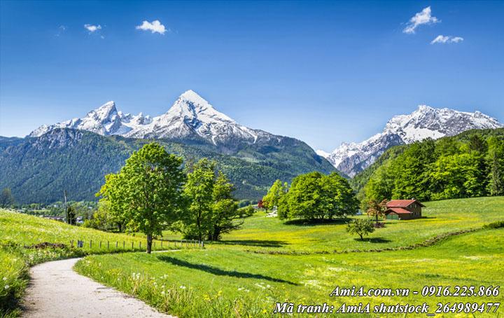 Hình ảnh phong cảnh núi đồi tây bắc thiên nhiên trong lành