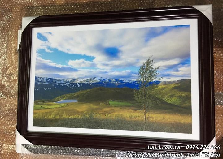 Hình ảnh tranh phong cảnh rừng núi mây trời trong xanh