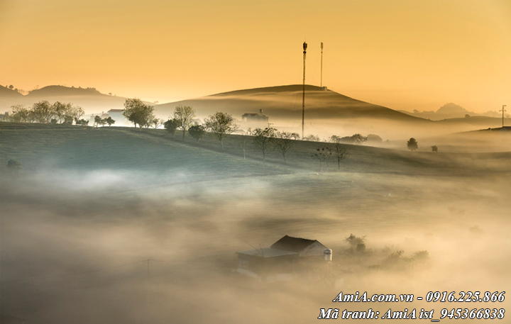 Hình ảnh phong cảnh rừng núi tây bắc giữa mờ sương