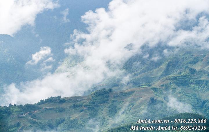 Tranh phong cảnh đẹp rừng núi tây bắc giữa mây trời
