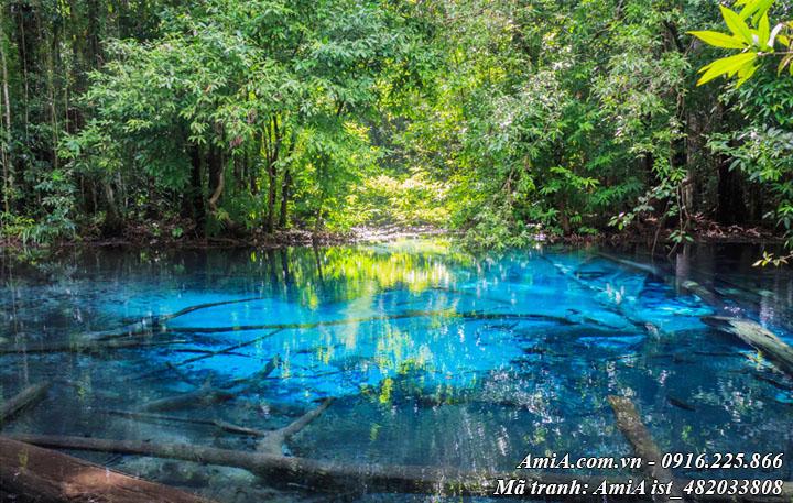 Hình ảnh bức tranh hồ trong xanh giữa núi rừng