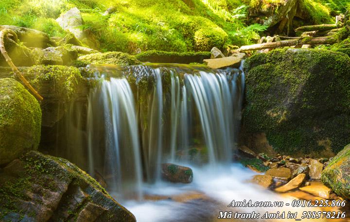Hình ảnh thác nước đẹp như mơ giữa rừng tây bắc