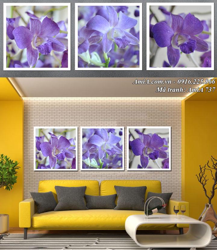 Hình ảnh tranh hoa lan xanh tím ghép bộ 3 tấm vuông Amia 737