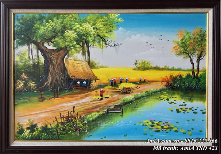 Hình ảnh tranh vẽ cảnh thu hoạch lúa TSD 423 sơn dầu