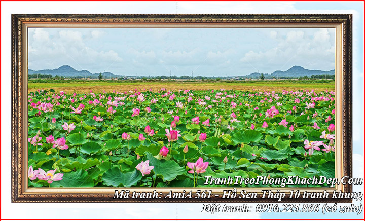 Tranh phong cảnh cánh đồng hoa Sen tháp 10 Việt Nam AmiA 561