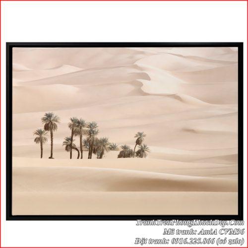 Hình ảnh tranh canvas sa mạc cát AmiA CVM36