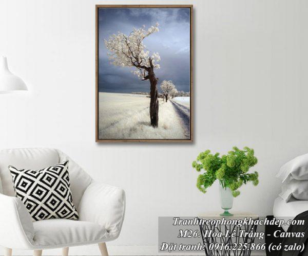 Tranh canvas treo phòng khách cây lê hoa trắng