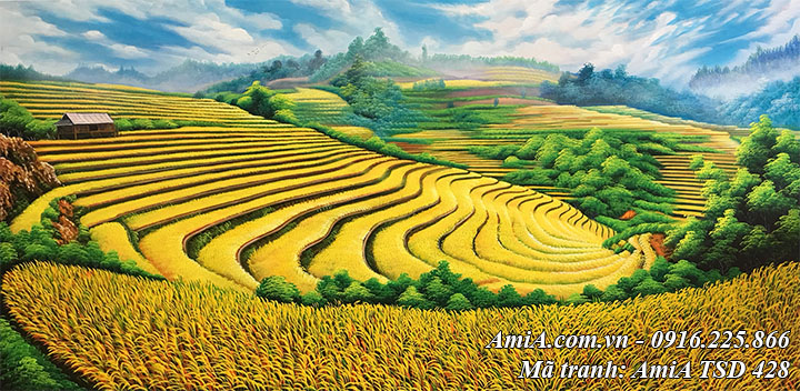 Tranh phong cảnh ruộng bậc thang mù căng chải mùa lúa chín