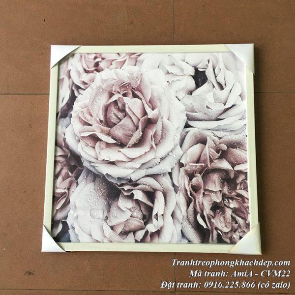 Hình ảnh tranh canvas hoa hồng Pháp mã Amia CVM22 thực tế ở cửa hàng tranh AmiA