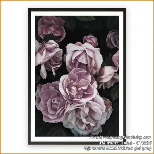 Tranh AmiA CVM16 hoa hồng Pháp in vải canvas