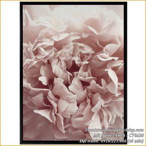 Hình ảnh tranh canvas CVM20 hoa mẫu đơn