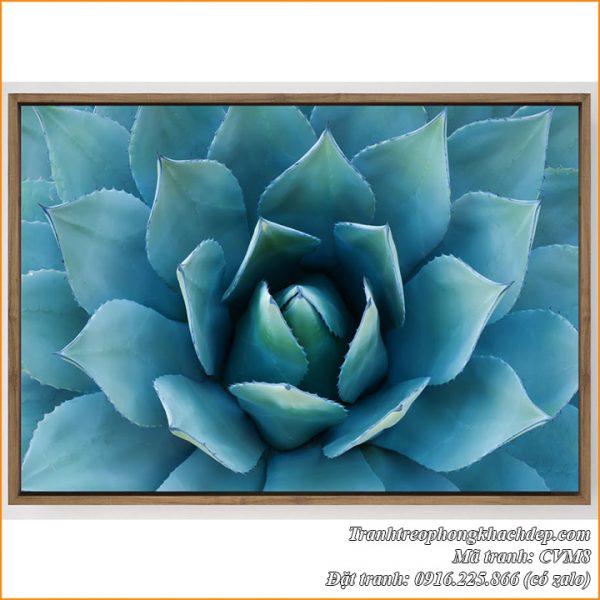 Hình ảnh tranh canvas AmiA CVM8 sen đá màu xanh