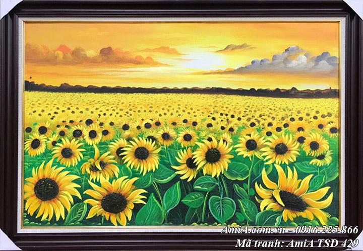 Hình ảnh tranh sơn dầu Amia TSD 429 cánh đồng hoa hướng dương