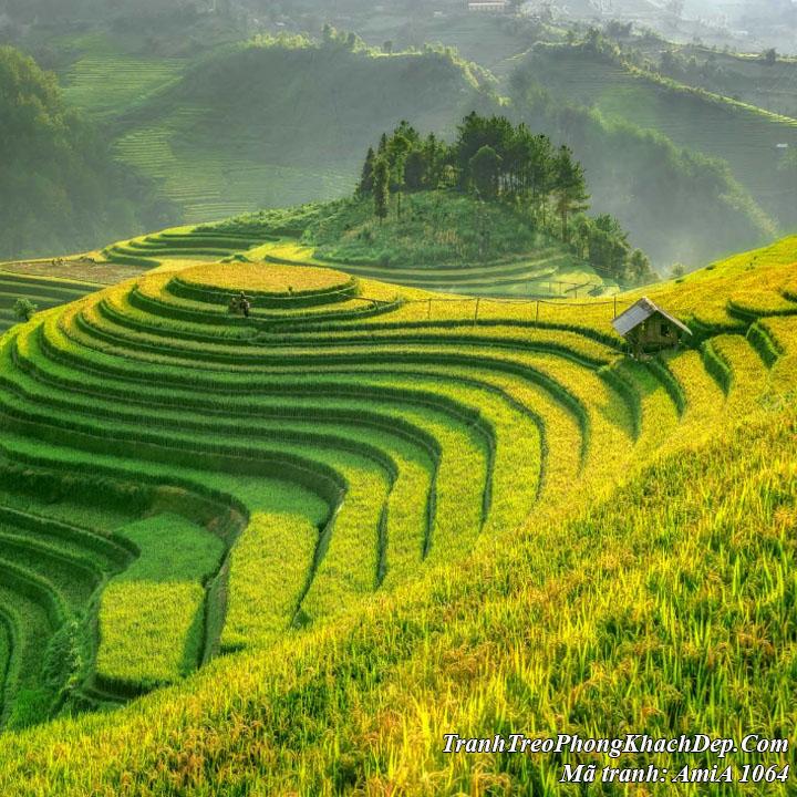 Tranh gỗ mùa lúa bắt đầu chín trên thửa ruộng bậc thang Amia 1064