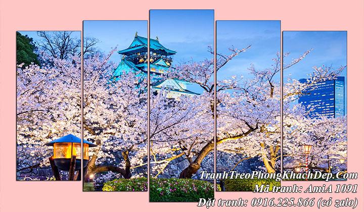 Tranh hoa anh đào đẹp nổi tiếng bên thành Osaka Nhật Bản AmiA 1091