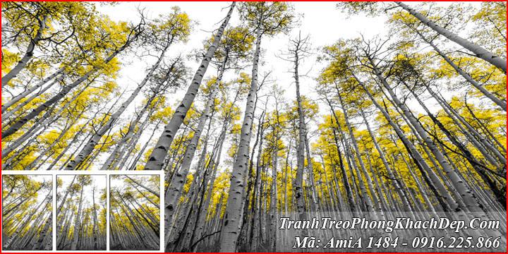 Tranh ghép 3 tấm rừng cây Amia 1484