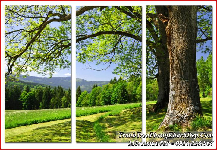 Tranh ghép rừng cây Amia 529 bộ 3 tấm