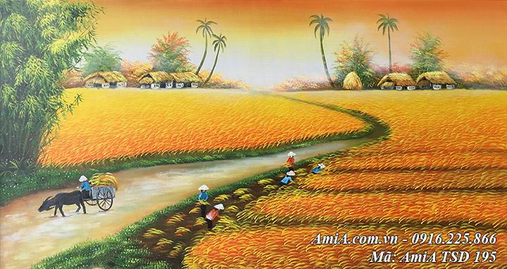 Hình ảnh đồng lúa chín quê em vẽ bằng sơn dầu AmiA TSD 195