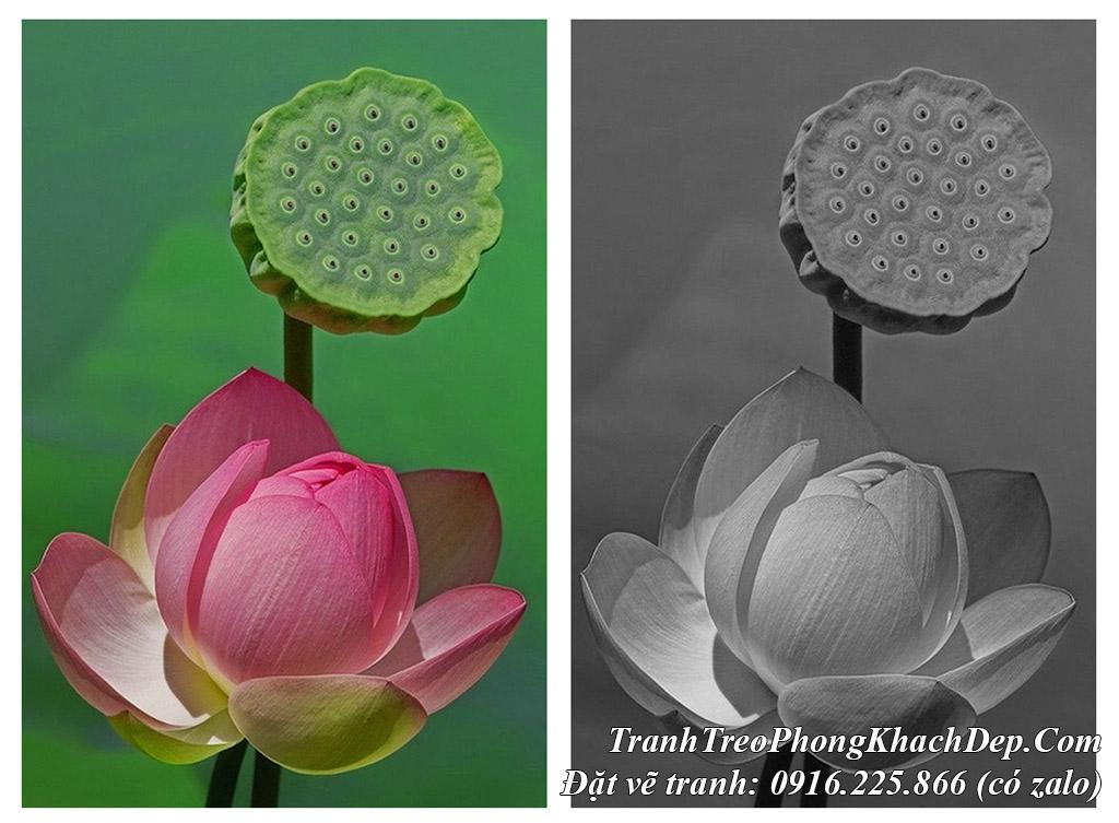 AmiA là địa chỉ chép tranh sơn dầu hoa sen nghệ thuật ở Hà Nội