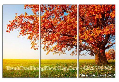 Tranh ghép 3 tấm cây mùa thu lá đỏ Amia 2024
