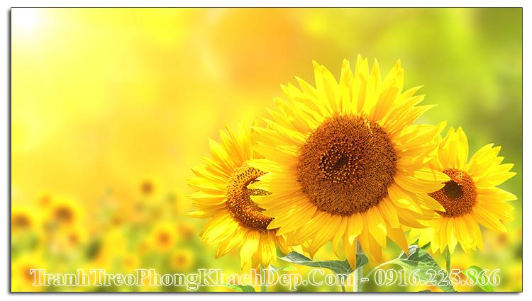 Tranh AmiA ist-610760712 hoa hướng dương làm theo yêu cầu