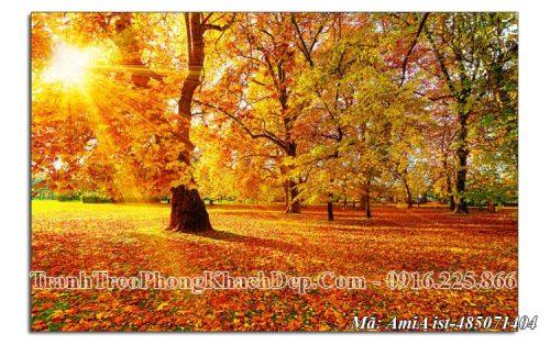 Tranh treo phòng khách nắng vàng mùa Thu AmiA 485071404