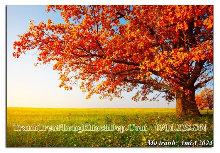 Tranh cảnh đẹp mùa Thu cây phong lá đỏ khổ lớn Amia 2024
