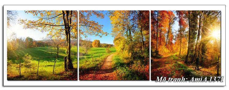 Tranh amiA 1371 nắng vàng mùa thu trong rừng
