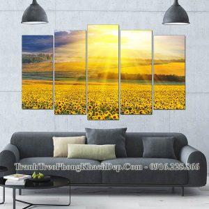 Tranh đẹp hoa hướng dương AmiA OP14258085 treo phòng khách