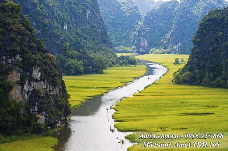 Tranh AmiA 168 cảnh đẹp quê hương Tràng An